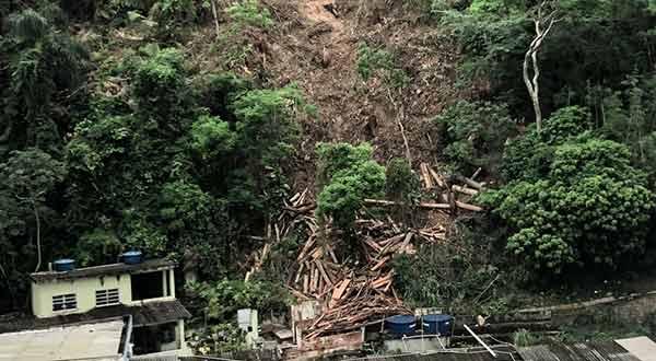 Corte de árvores no Morro do Caniço