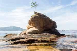 Pedra da Itapuca