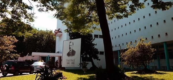 7977b96f4b3 O Instituto Vital Brazil (IVB) está criando galinhas
