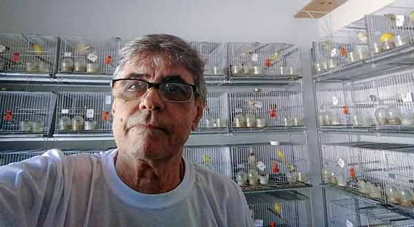 canários - Ademir Eugenio Lopes