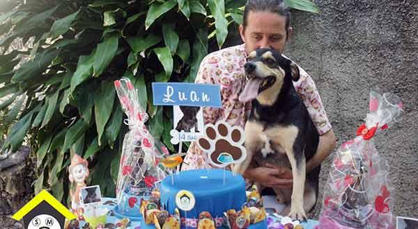 festa pra cachorro
